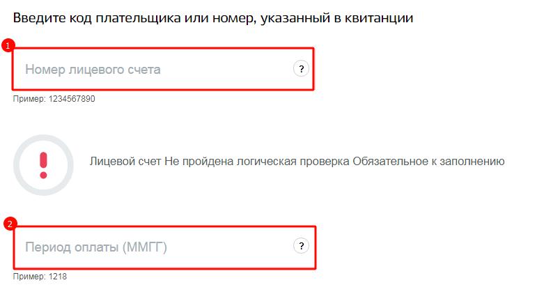 Ввод данных лицевого счета для получения информации