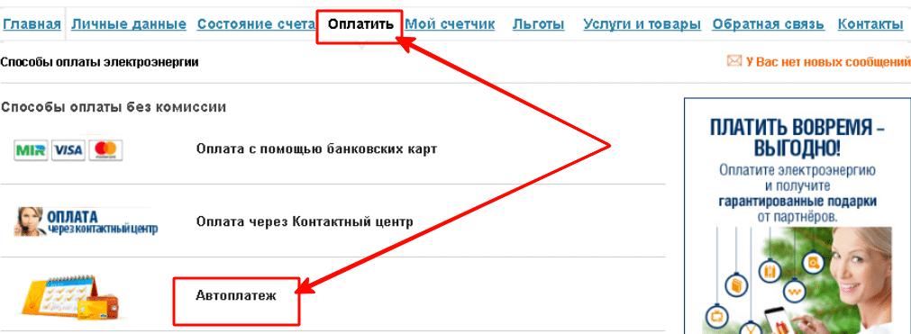 Настроить автоплатеж на сайте Мосэнергосбыт